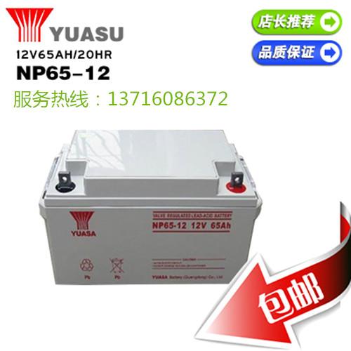 汤浅NP65-12技术参数