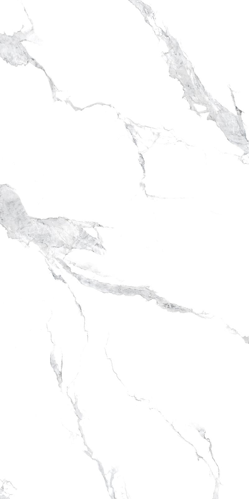 91827-沙士比亚白