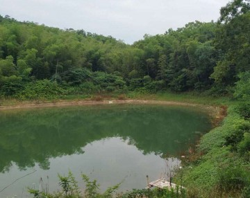 第38期:安农校友考察安徽太湖山森林公园