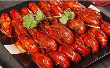 深圳哪里学做小龙虾