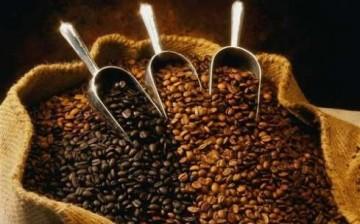 龙岗咖啡烘焙小吃培训班 龙岗咖啡烘焙小吃培训学校 龙岗咖啡烘焙小吃培训学校哪家好