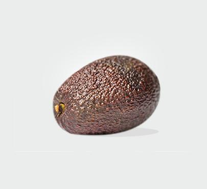 生态牛油果
