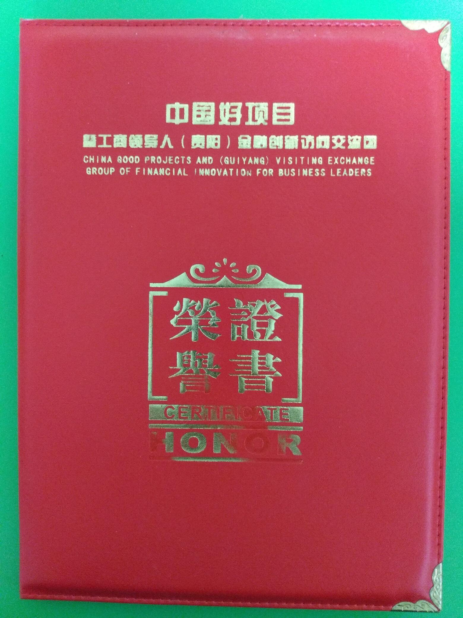 中国好项目20强证书封面