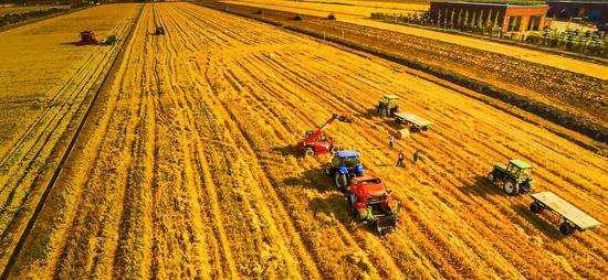 购买二手农用机械防骗手册,一不小心会吃亏上当